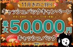 ヒロセ通商11月キャッシュバックキャンペーン