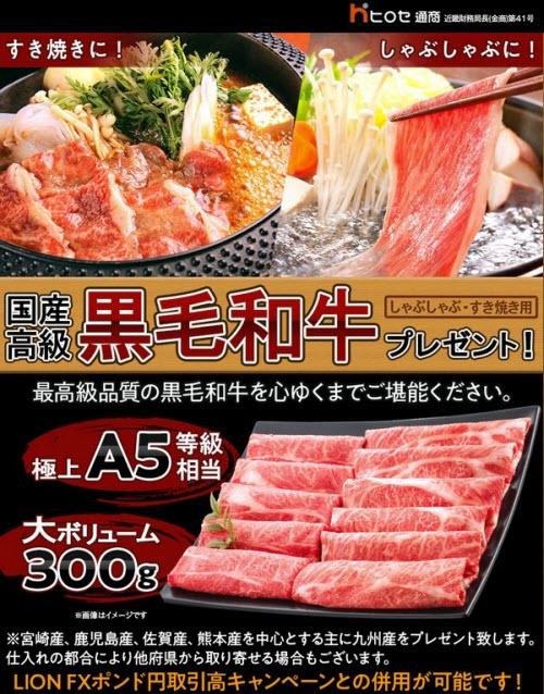 ヒロセ通商12月キャンペーン